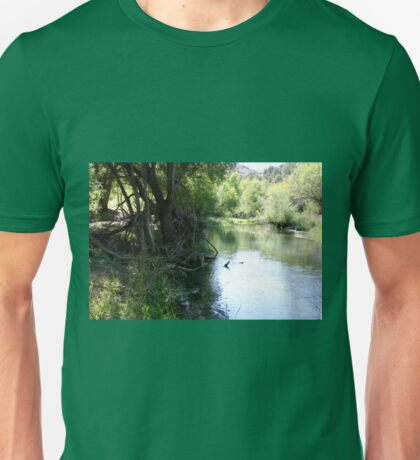 Looking Downstream, Upper Verde River Canyon Unisex T-Shirt