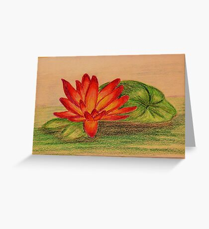 Waterlily - Colored Pencil Drawing Greeting Card