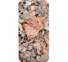 Dry leaves iPhone Case/Skin