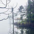 Mingyue by Nishant Kuchekar
