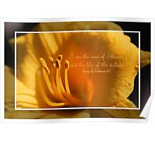 I am the Rose of Sharon and the Lily of the Valley Poster