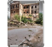 Abandoned, haunted house in Cordoba iPad Case/Skin
