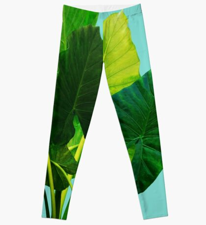 Urban Jungle Leggings