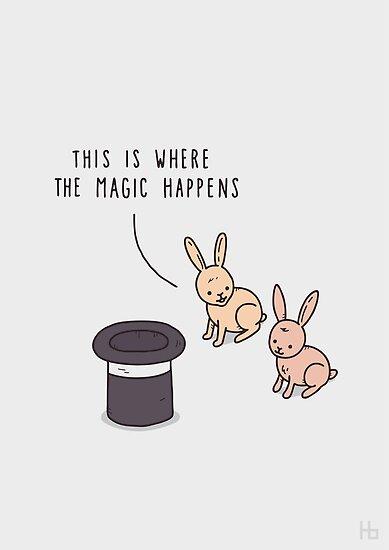Magic by Haasbroek