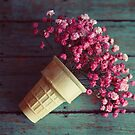 flower cone I by beverlylefevre