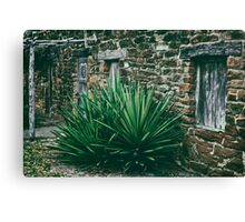 abode Canvas Print