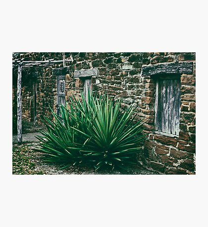 abode Photographic Print