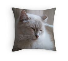 Contentment Throw Pillow