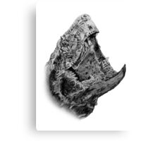Alligator Snapping Turtle Canvas Print