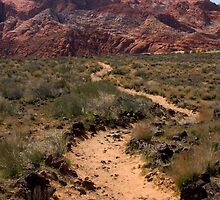 Pathway Winding Towards Red Rock Mountain by NoblePhotosCard