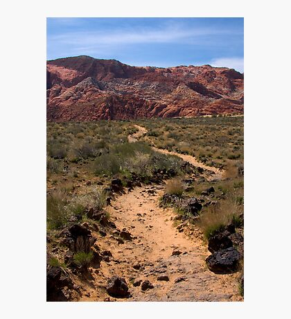 Pathway Winding Towards Red Rock Mountain Photographic Print