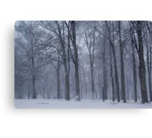 Dreamy Snowfall in Woods Canvas Print