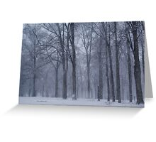 Dreamy Snowfall in Woods Greeting Card