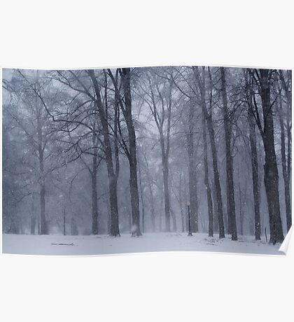 Dreamy Snowfall in Woods Poster