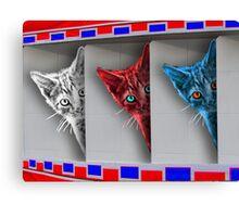 Patriotic Kittens Canvas Print