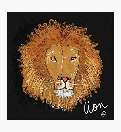 Lion Photographic Print