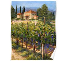 Chianti Vineyard Poster