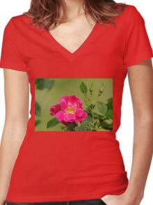 Pink Garden Rose Women's Fitted V-Neck T-Shirt