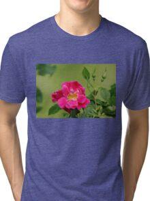 Pink Garden Rose Tri-blend T-Shirt
