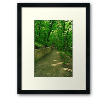 road in the woods Framed Print