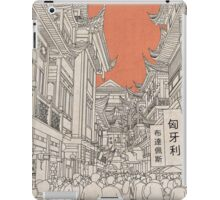 In China II. iPad Case/Skin