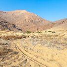 Tracks in the sand by Rudi Venter