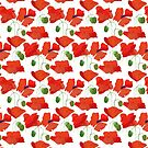 Scarlet Field Poppies on White Background by Judy Adamson