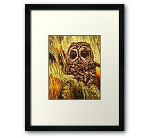 Hoot Framed Print