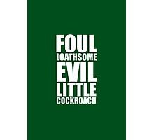 Foul Loathsome Evil Little Cockroach Photographic Print