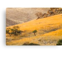Grassy slope Canvas Print