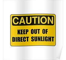 Direct Sunlight Poster