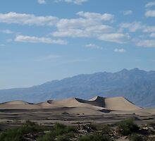 Dune by half4adventure