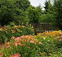 Bridge in the Daylily Garden by Sandy Keeton