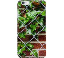 Ivy & the wall iPhone Case/Skin
