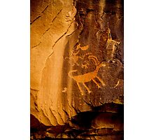 Big Horn Sheep Petroglyph - Nine Mile Canyon - Utah Photographic Print