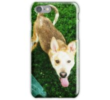Chim Char iPhone Case/Skin