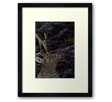 Stag at the Northern Lights Framed Print