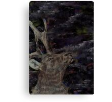 Stag at the Northern Lights Canvas Print
