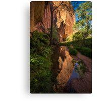 Coyote Gulch Canyon Reflection - Utah Canvas Print