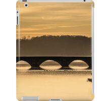 Cameron Run Bridge III iPad Case/Skin