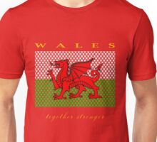 WALES, STAR, TOGETHER STRONGER, EURO Unisex T-Shirt