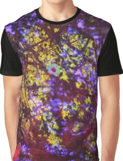 Linford Summer - prism design 2 Graphic T-Shirt