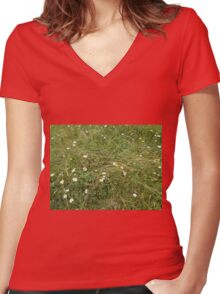 Flowers in a field Women's Fitted V-Neck T-Shirt