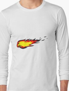 Feuer flamme feuerball agro  Long Sleeve T-Shirt