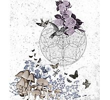 astrological garden party Photographic Print