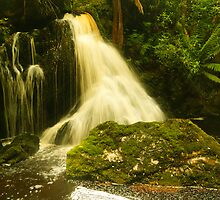 Falls on the Hebe River, north-western Tasmania by Nic Haygarth