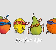 Fruit Ninja Turtles by moritzstork