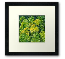 Banana Leaves Framed Print