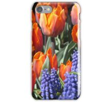 Fiery Tulips and Grape Hyacinths iPhone Case/Skin