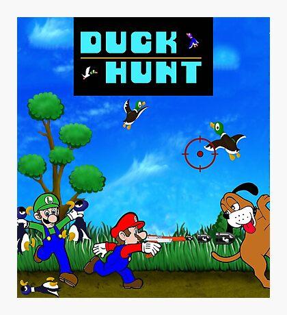 Mario and Luigi : Duck Hunt Photographic Print